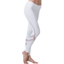 Tight Mesh Yoga Leggings for Women